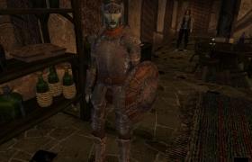 Morrowind_27