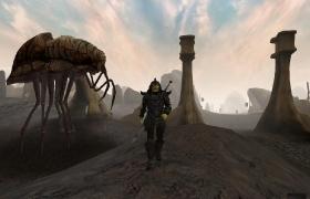Morrowind_69