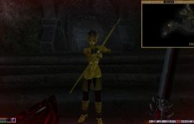 Morrowind_9