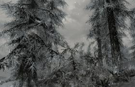Skyrim_16