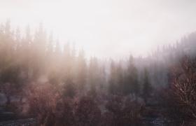Skyrim_263