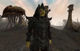 Morrowind_70