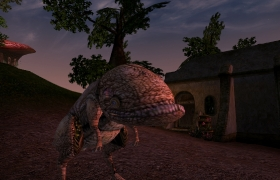 Morrowind_80