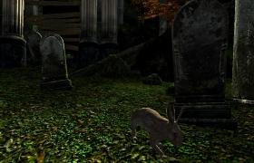Вот кладбище. А вот зайчик.